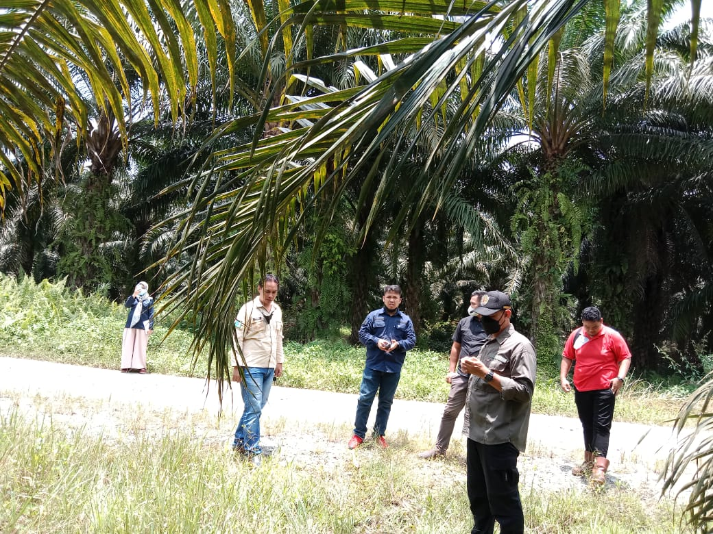 Pelaksanaan CP/CL bersama dinas perkebunan provinsi Kalimantan Timur Usulan kegiatan Sarana dan Prasarana Dalam kerangka Pendanaan BPDPKS